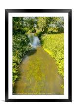 Summer Stream, Framed Mounted Print