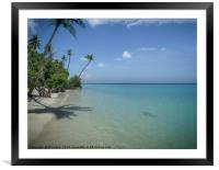 Paradise, Framed Mounted Print