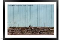 Crack In The Fence, Framed Mounted Print
