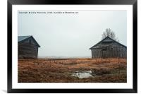 Two Old Barn Houses On The Rainy Fields, Framed Mounted Print