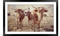The Three Amigos, Framed Mounted Print