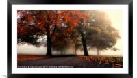 Foggy Autumn Trees, Framed Mounted Print