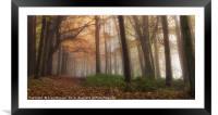 Misty Forest, Framed Mounted Print