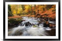 Autumn Alyth Den, Framed Mounted Print