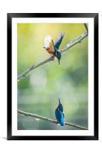 Face to face, Framed Mounted Print