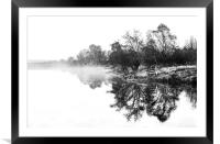 Dramatic trees, Framed Mounted Print