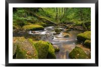 A magical place, Framed Mounted Print