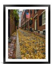 The Fall on Acorn Street ,Boston, Framed Mounted Print