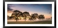 Mist in the Fields at Sunrise, Framed Mounted Print