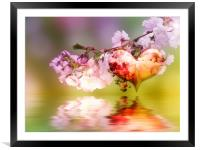 Spring fever, Framed Mounted Print