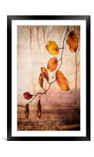Autumn melody , Framed Mounted Print