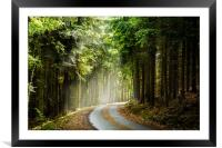 Czech forest in the day sunlight rays., Framed Mounted Print