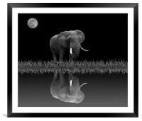 Elephant By Moonlight, Framed Mounted Print