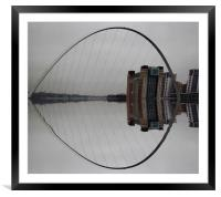 Reflections, Framed Mounted Print