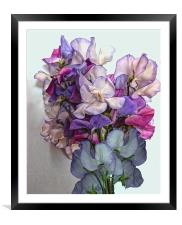 Bunch Of Sweet Peas, Framed Mounted Print