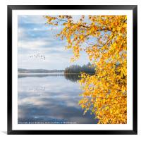 Leaving (The colors of autumn), Framed Mounted Print