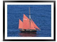 Brixham Trawler Pilgrim , Framed Mounted Print