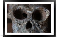 Monkey skull isolated , Framed Mounted Print