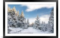Snow in Teesdale, Framed Mounted Print