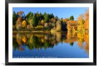 Penicuik Pond autumn colours 2016, Framed Mounted Print