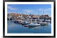 Anstruther marina, Framed Mounted Print
