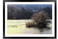 Winter wonderland 1, Framed Mounted Print