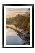 Autumn Light, Framed Mounted Print