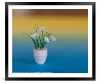 Quilled flowers, Framed Mounted Print