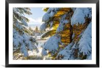 Winter Wonderland Snowscape , Framed Mounted Print