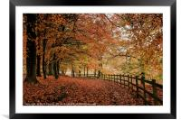 Ryburn in Autumn, Framed Mounted Print