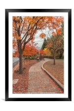 Yountville in Autumn, Framed Mounted Print