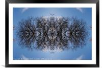 Tree pattern 2, Framed Mounted Print