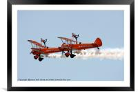 Wing walkers , Framed Mounted Print