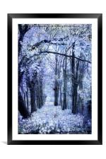 walk in the autumn forest with mist , Framed Mounted Print