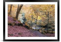 autumn woodland with river and bridge in Hardcastl, Framed Mounted Print