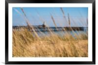 A Grassy View, Framed Mounted Print