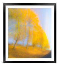 Autum Colours, Framed Mounted Print
