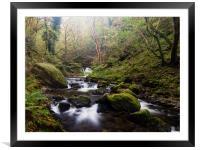 Dolgoch Falls., Framed Mounted Print