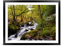 Dolgoch Falls in the Autumn., Framed Mounted Print