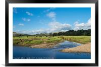 Grazing Cattle in Wensleydale, Framed Mounted Print