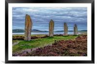 The Sentinels, Framed Mounted Print