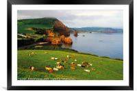 Ladram Bay, East Devon, Framed Mounted Print