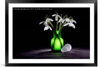 Snowdrops, Framed Mounted Print