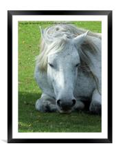 Deep in thought, Framed Mounted Print