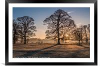 Sunrise and Winter Trees Felbrigg, Framed Mounted Print