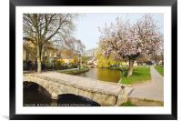 Spring Blossom Bourton-on-the-Water , Framed Mounted Print