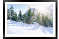 Sun rays through snowy mountains and trees, Framed Mounted Print