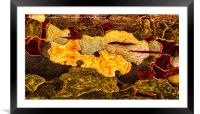Tree Bark abstract , Framed Mounted Print