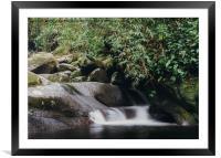 Relaxing zen stream in forest, Framed Mounted Print