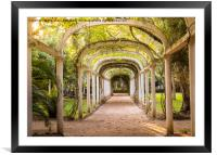 Tropical arches, Framed Mounted Print